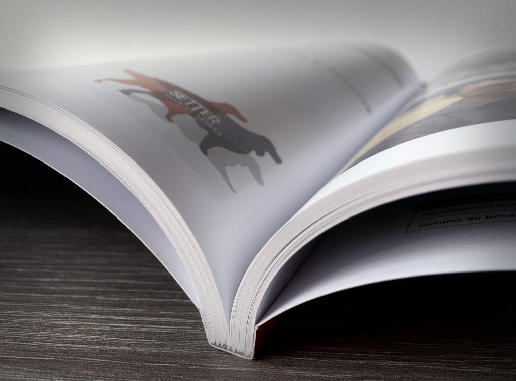 revista-13